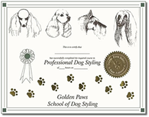 complete guide book - professional dog styling certificate