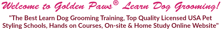 "Welcome to Golden Paws® Learn Dog Grooming! ""The Best Learn Dog Grooming Training, Top Quality Licensed USA Pet Styling Schools, Hands on Courses, On-site & Home Study Online Website"""